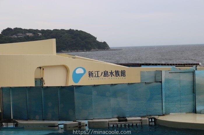 新江ノ島水族館に行く前に「知っておけばよかった!」と思ったこと