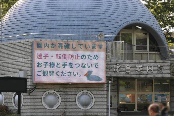 「シャンシャン」人気で上野動物園は大混雑なので子供が迷子にならないよう注意
