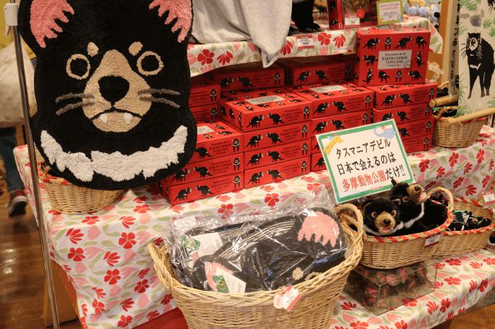 多摩動物公園のギフトショップ(コレクション)店内のタスマニアデビルコーナー