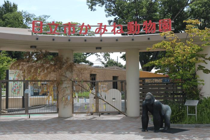 日立市かみね動物園の入園ゲート