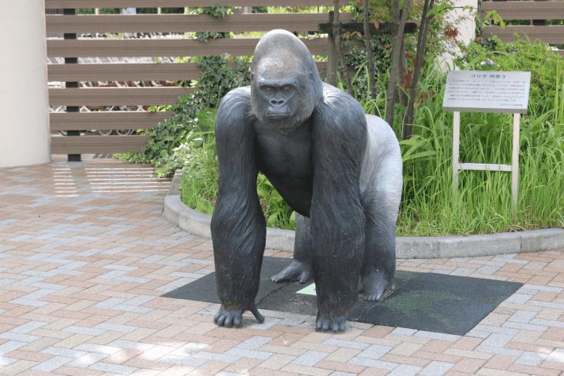 日立市かみね動物園入園ゲート脇のゴリラ像