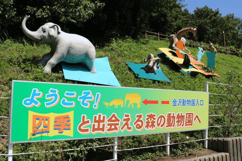 横浜市立金沢動物園は四季と出会える森の動物園