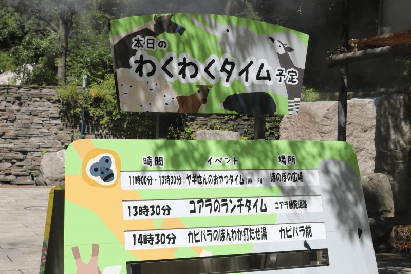 横浜市立金沢動物園のイベント「わくわくタイム」