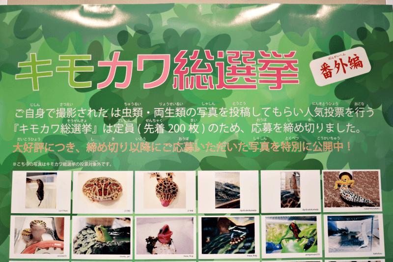 なかがわ水遊園 キモカワ総選挙 番外編