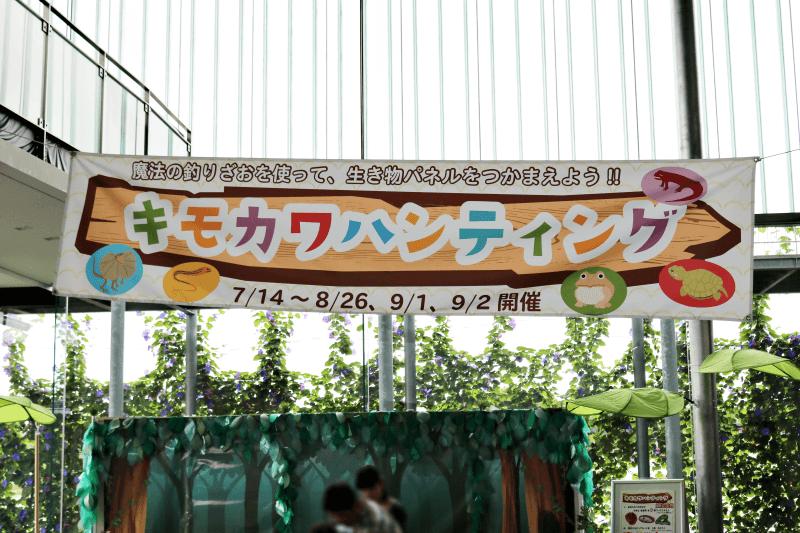 なかがわ水遊園の企画展関連イベント「キモカワハンティング」