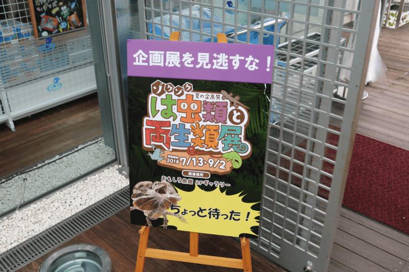 なかがわ水遊園の企画展を見逃すな!