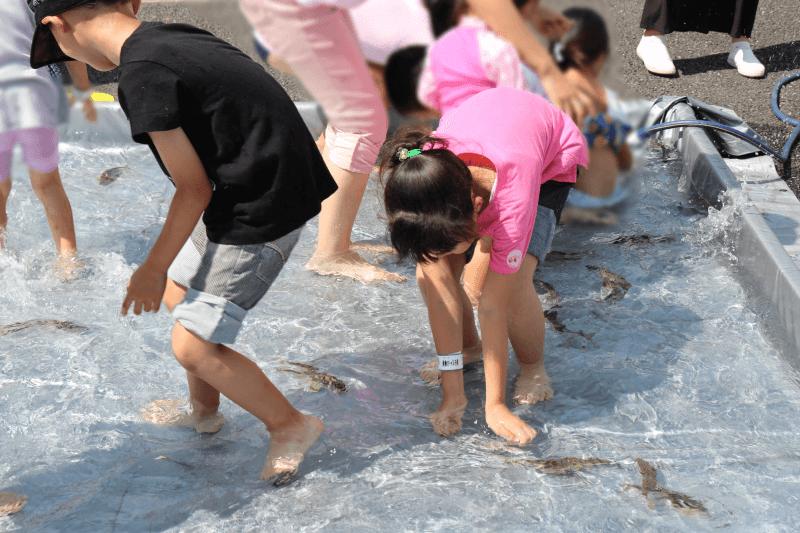 むさしの村の鮎のつかみ取り体験で鮎に翻弄される子供