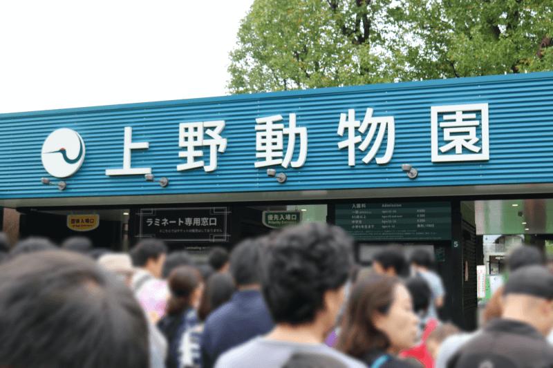 上野動物園に近い上野恩賜公園第一駐車場が閉鎖2019年11月18日から