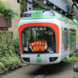 上野動物園で小学生の子供とモノレールに乗り西園食堂で初ランチ!