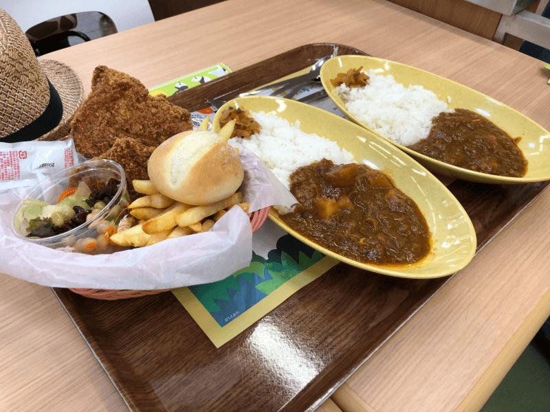 上野動物園 西園食堂でランチ ビーフカレーとチキンバスケット